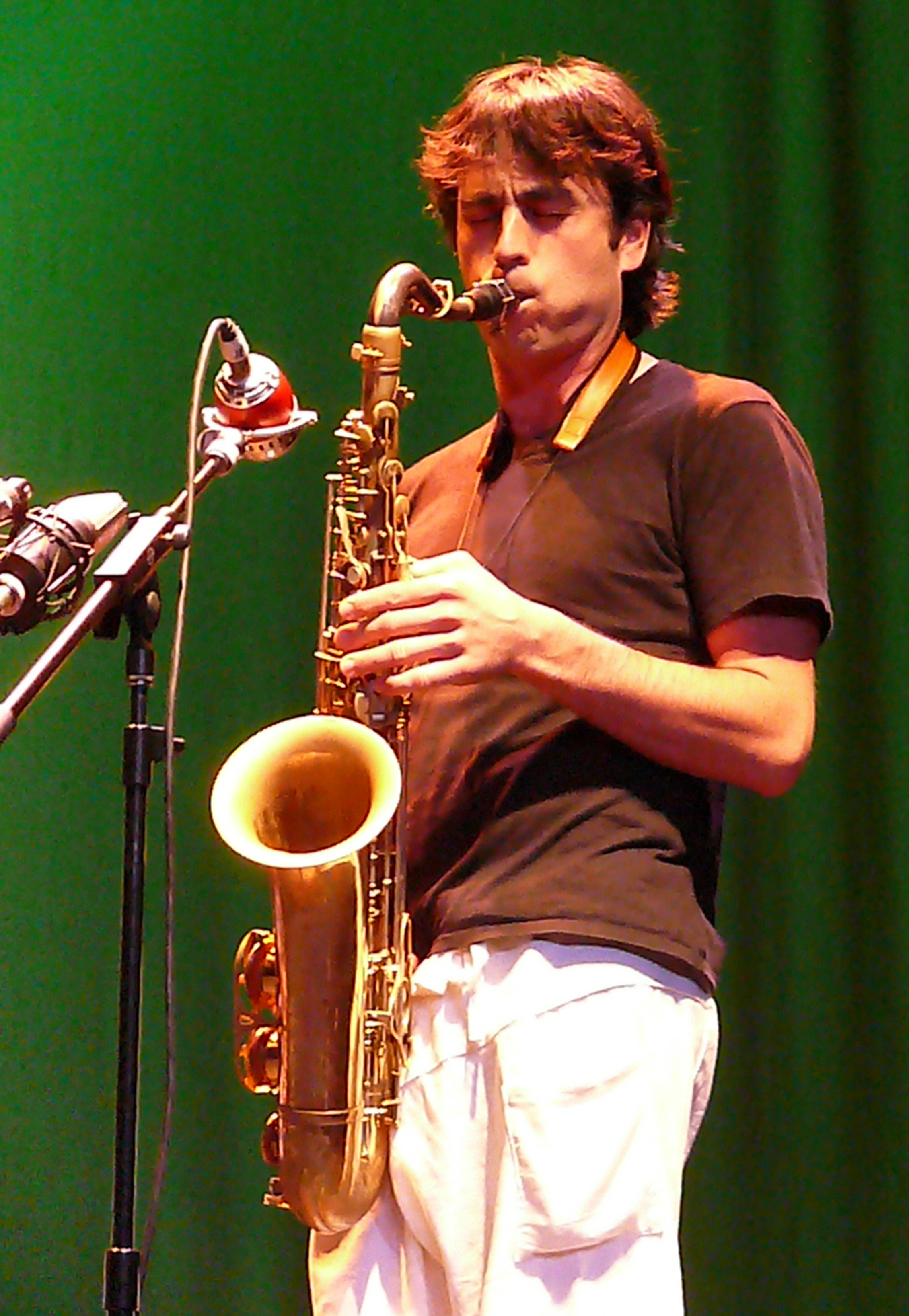 Lorenzo Sanguedolce at Vision Festival 2010