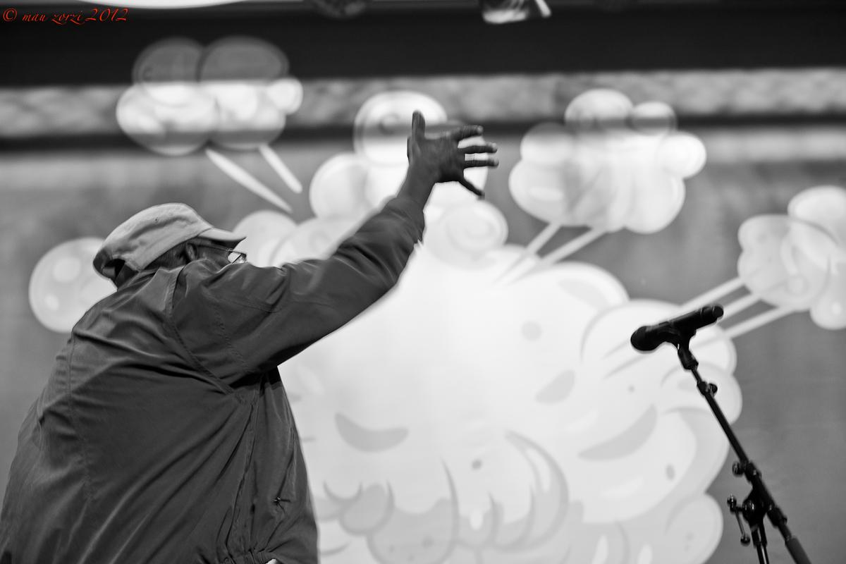 Saalfelden 2012 - Mainstage@Congresshalle