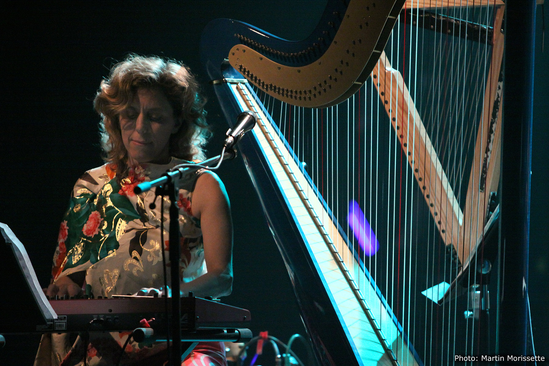 Zeena Parkins at Fimav 2011