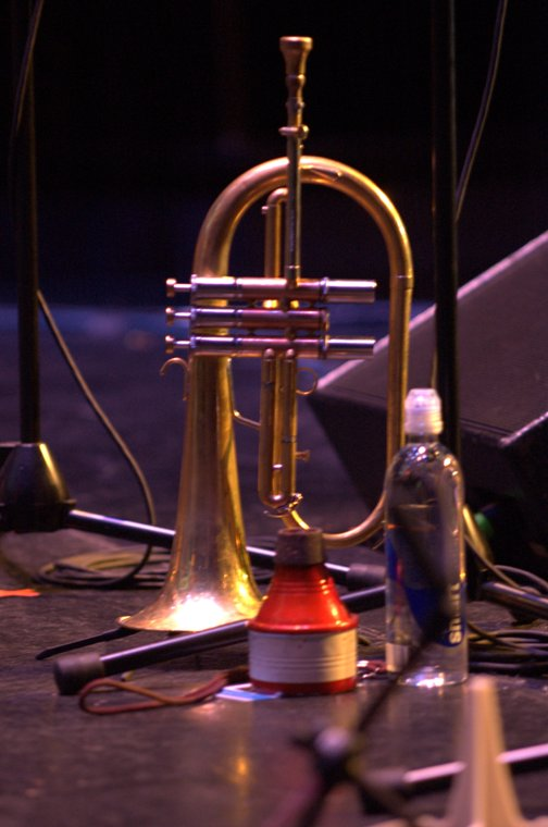 Horn and Mute of Roy Hargrove 2010
