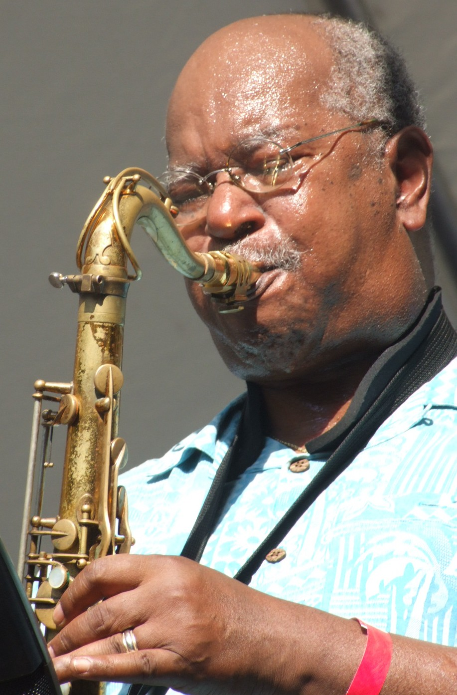 2008 Chicago Jazz Festival, Friday: Ari Brown Did a Guest Stint in a Set Led by Bluesman Billy Branch