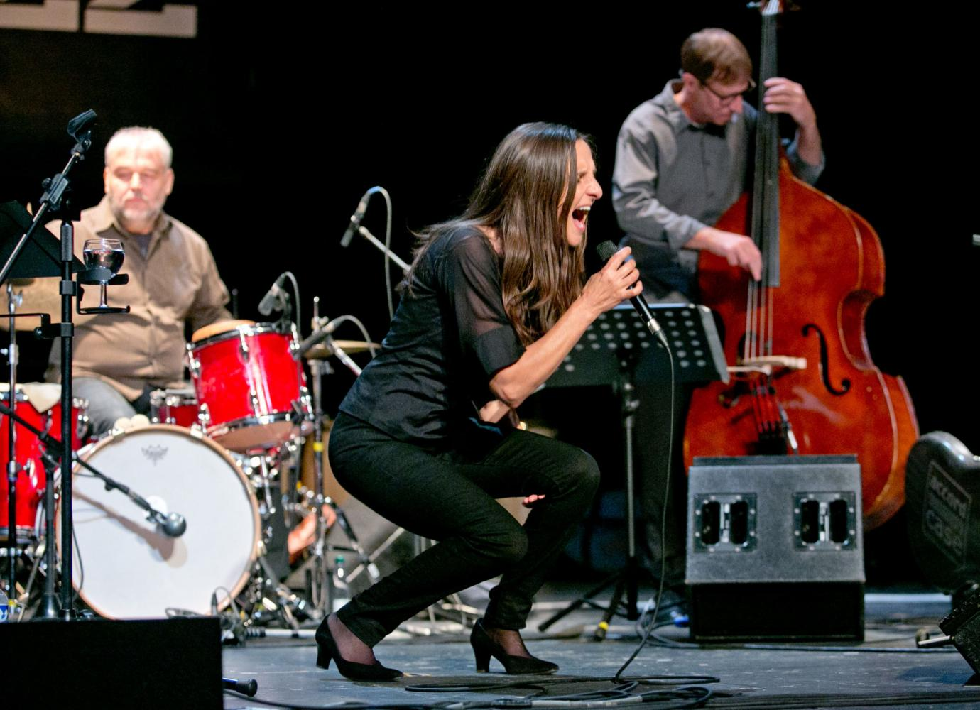 Tamara Obrovac Transhistria Ensemble