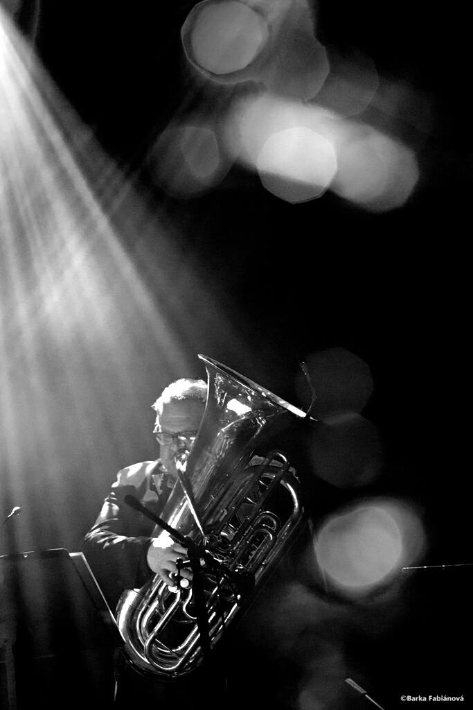 Michel Godard