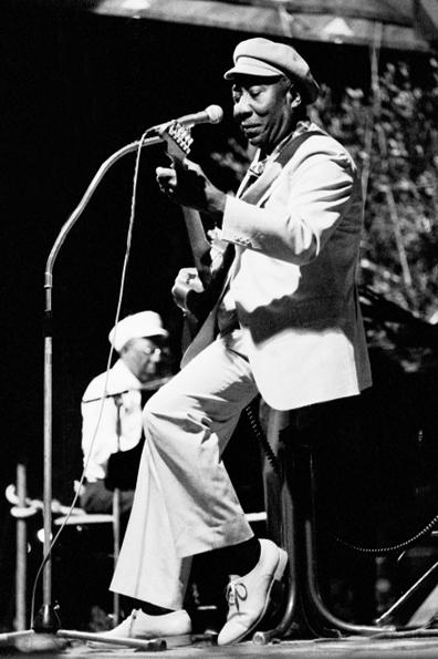 Muddy Waters: Nice / France, 1981