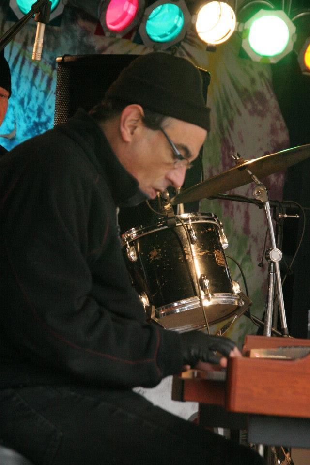Tony Monaco at Bob Niederriter Trio at Nelson Ledges Quarry Parks , Gorry at the Quarry Festival