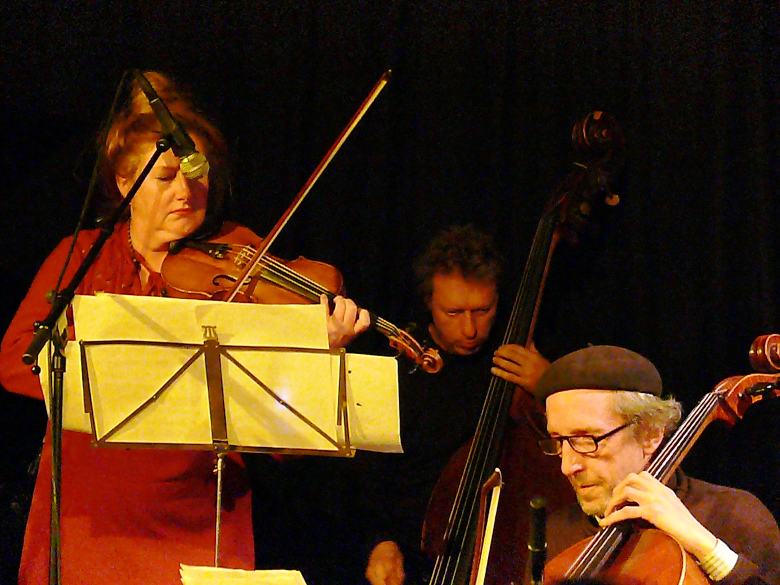 Mary oliver, ernst glerum and tristan honsinger at the vortex, london in february 2013