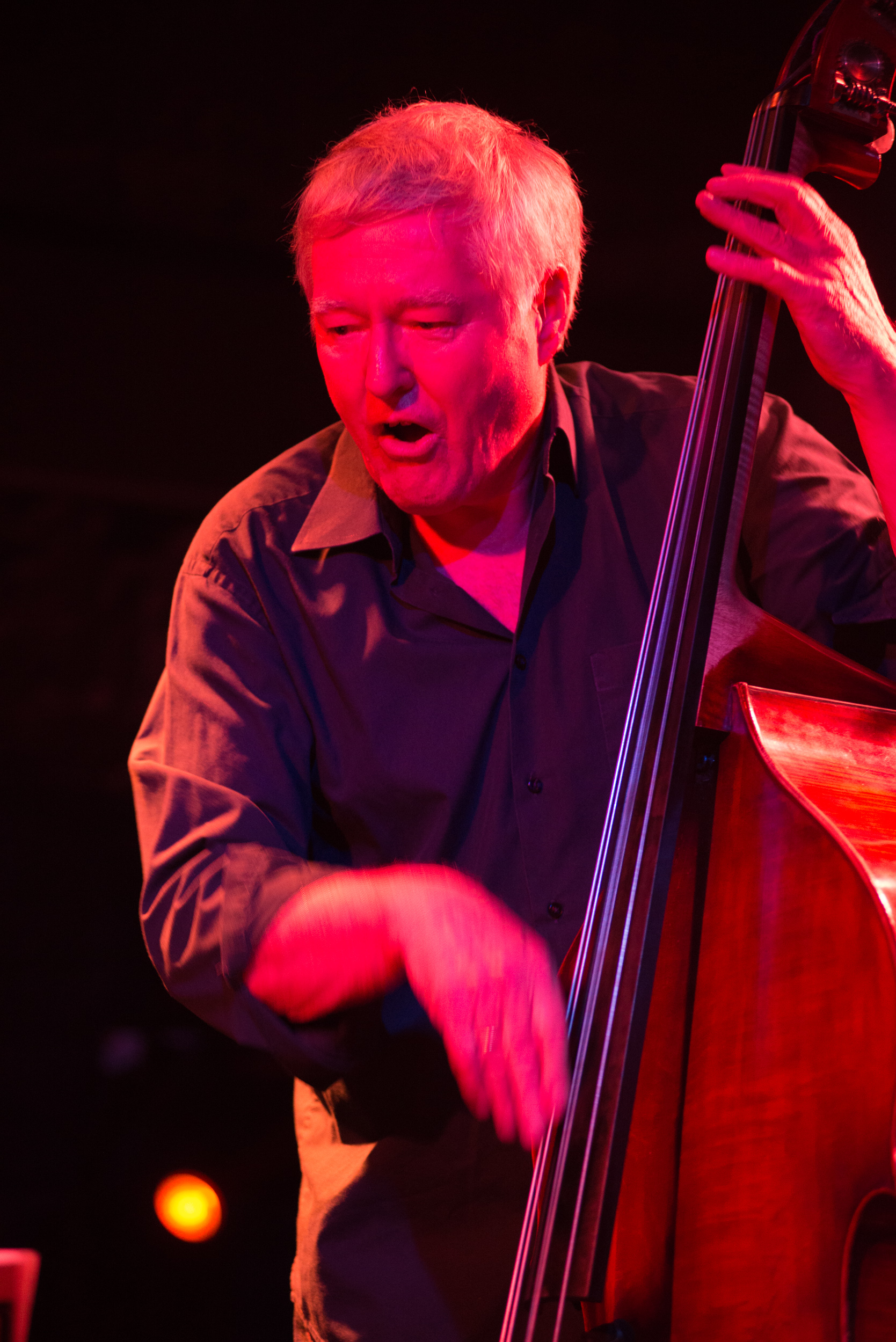 Arild Andersen Trio, Club Control, Bucharest, october 2018