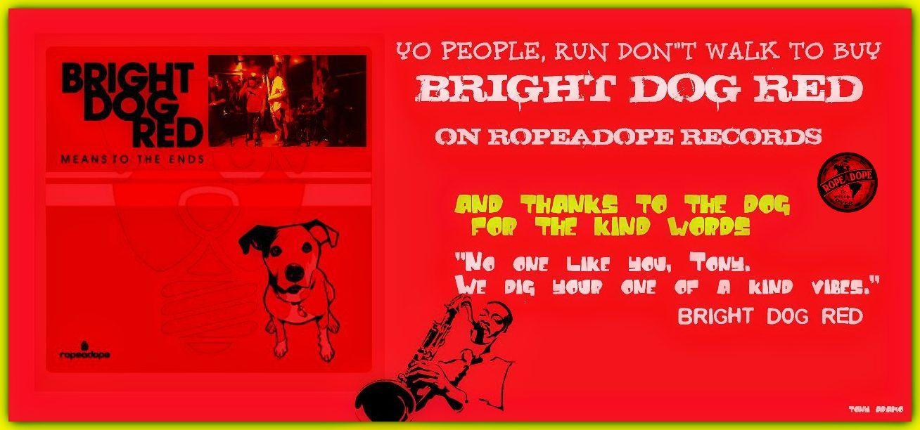 Bright Dog Red/Tony Adamo