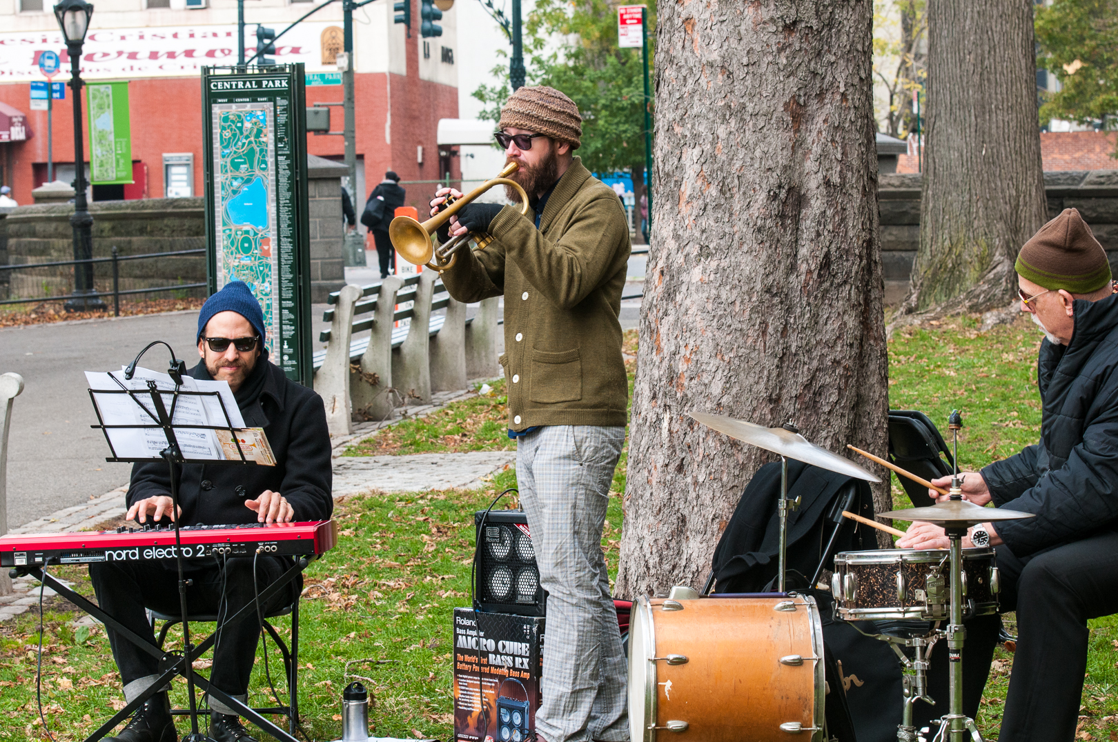 Jesse Stacken, Kirk Knuffke and Bill Goodwin at Jazz and Colors in Central Park