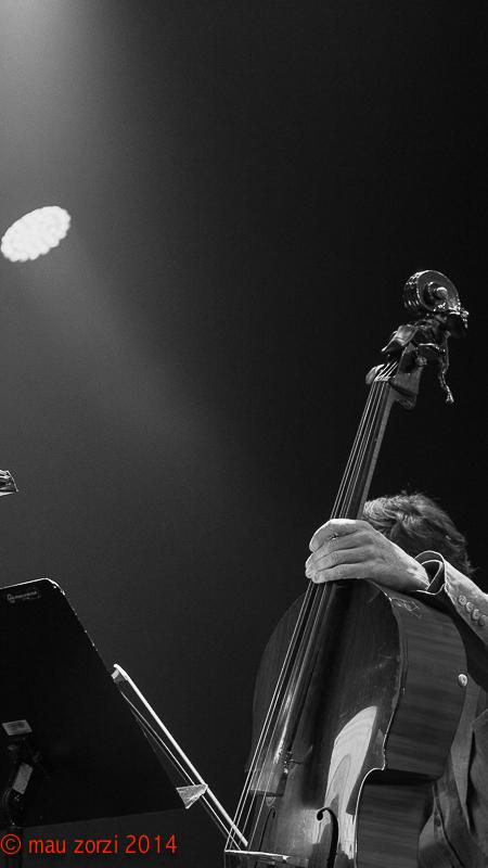 Jazz Festival Saalfelden 2014