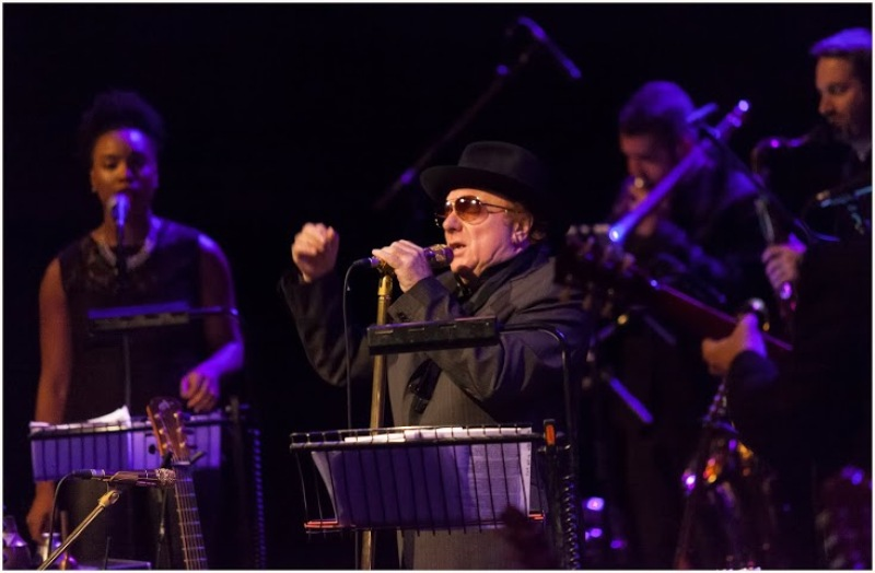 Van Morrison at The Limerick Jazz Festival