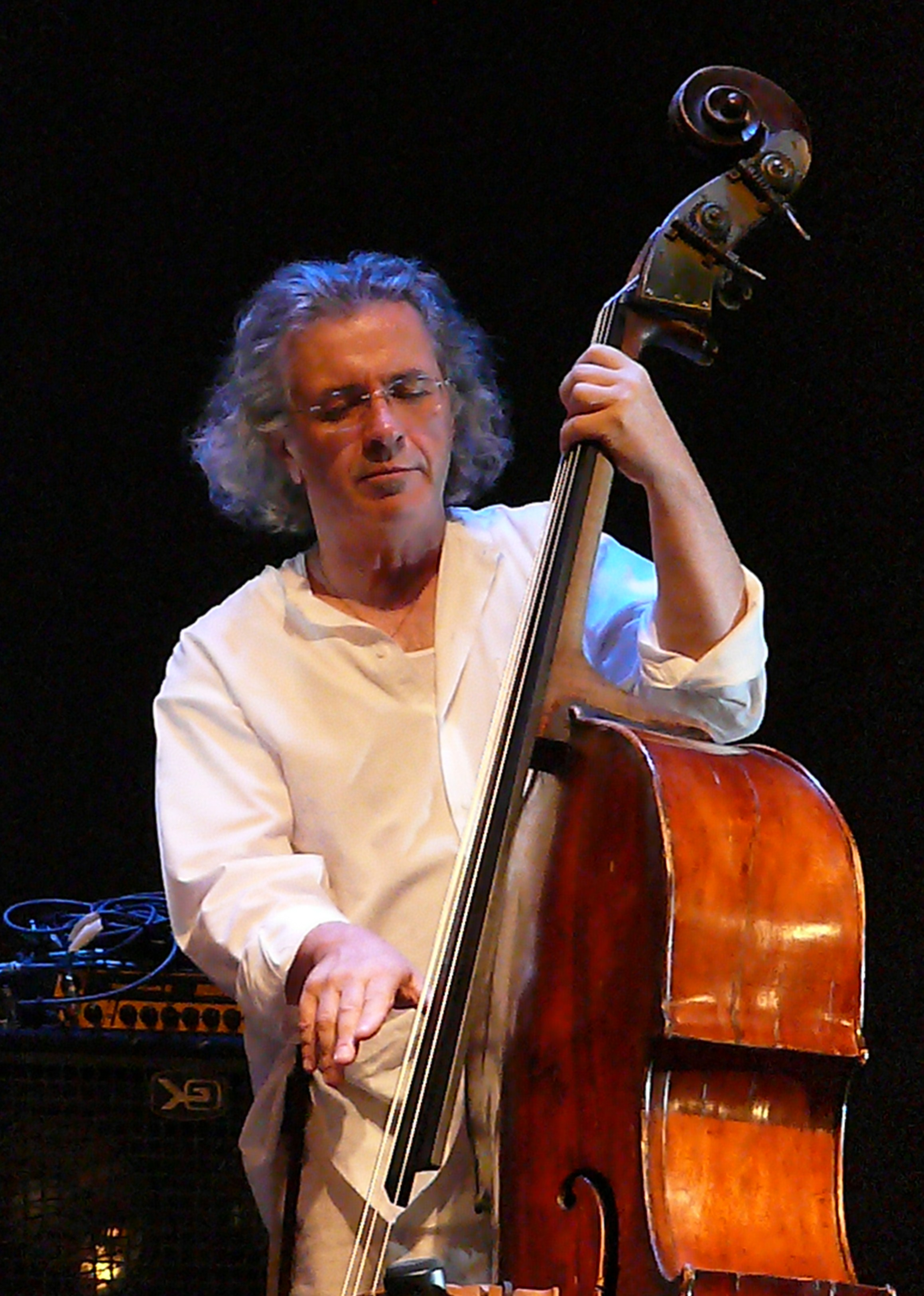 Michael Bisio at the Vision Festival 2011