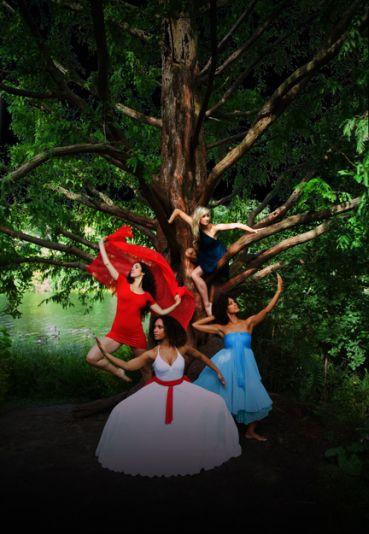 The Dance Migration