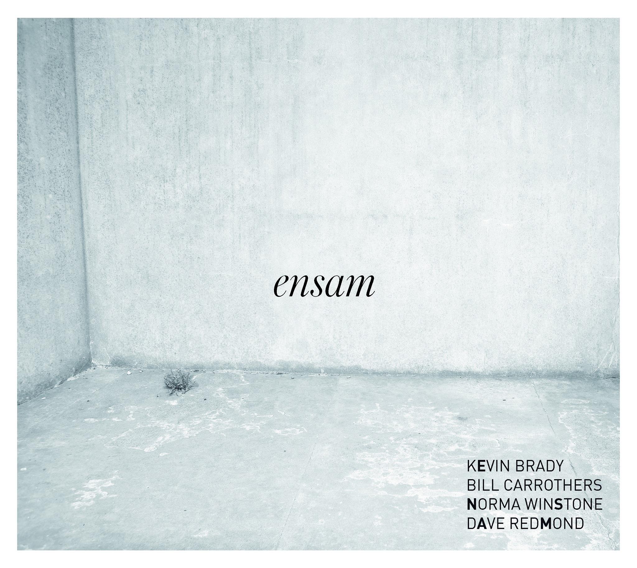 Ensam Album Cover