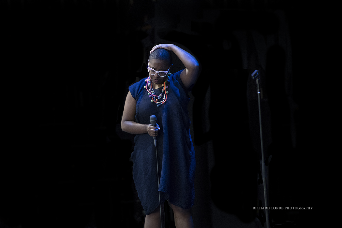 Dee Dee Bridgewater at the Freihofer Saratoga Jazz Festival 2017