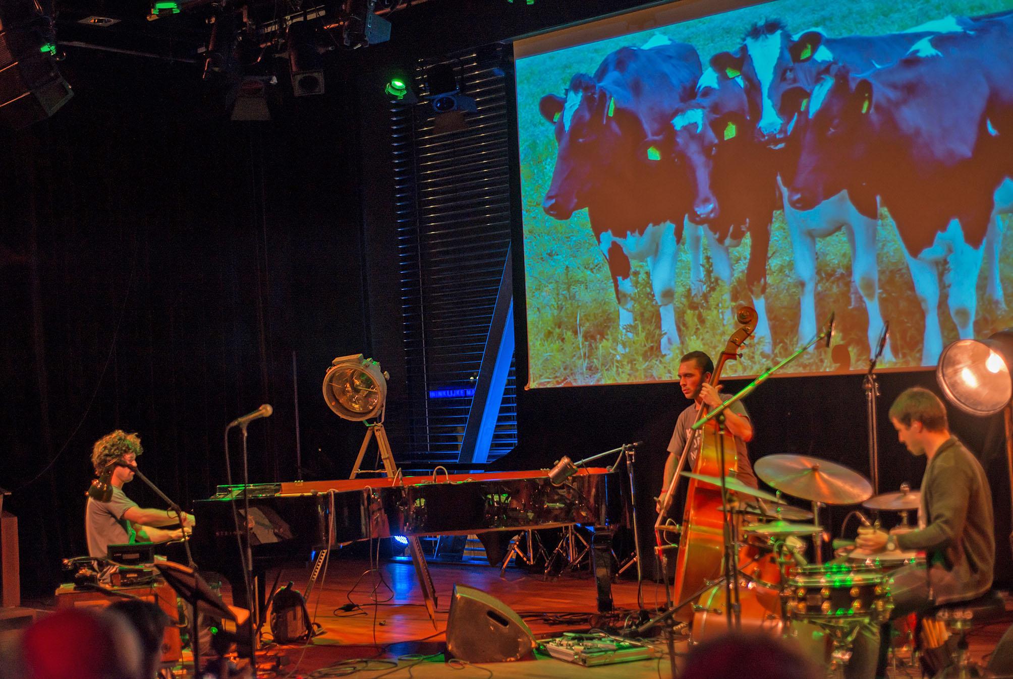 Tin Men and the Telephone at Dutch Jazz & World Meeting 2012
