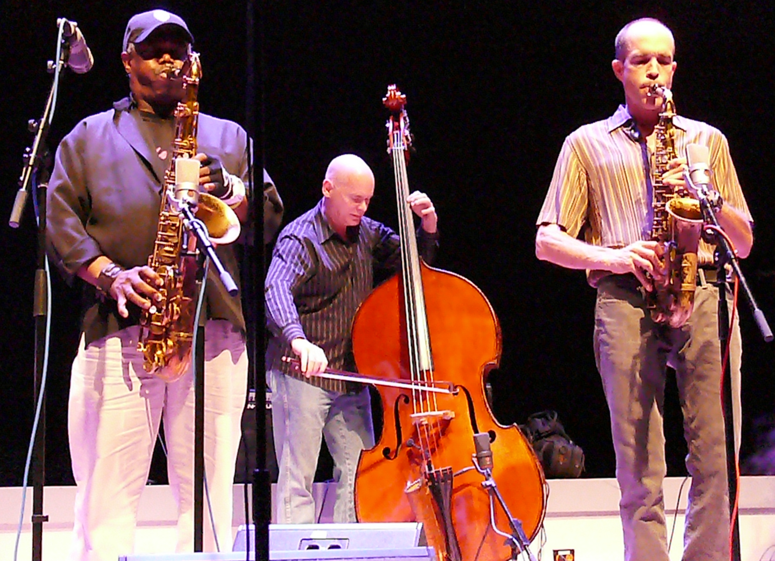 Joe mcphee, mark helias and rob brown at the vision festival, new york in june 2013