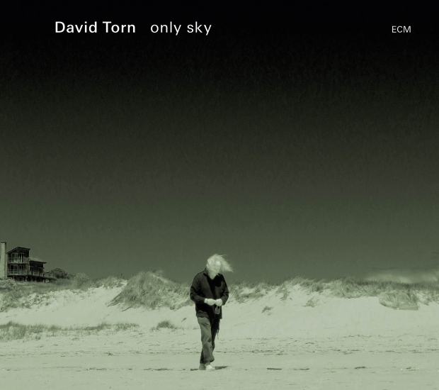David Torn