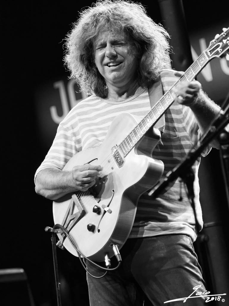 Pat Metheny-2018-(3)