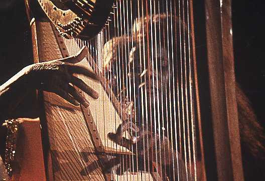 Alice Coltrane Harp