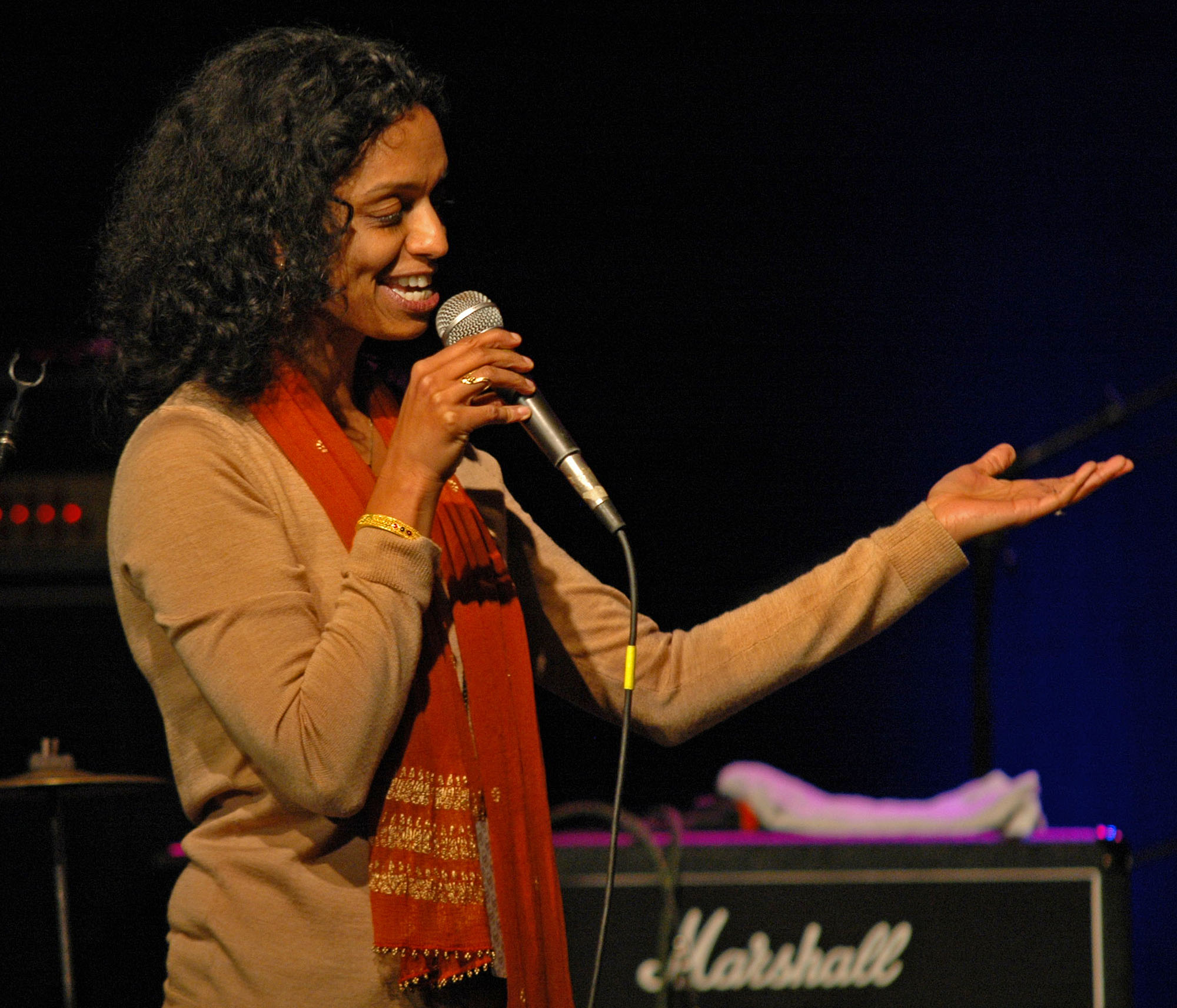 Sumitra Nanjunjdan, Before the John McLaughlin Tribute at the 2010 New Universe Music Festival