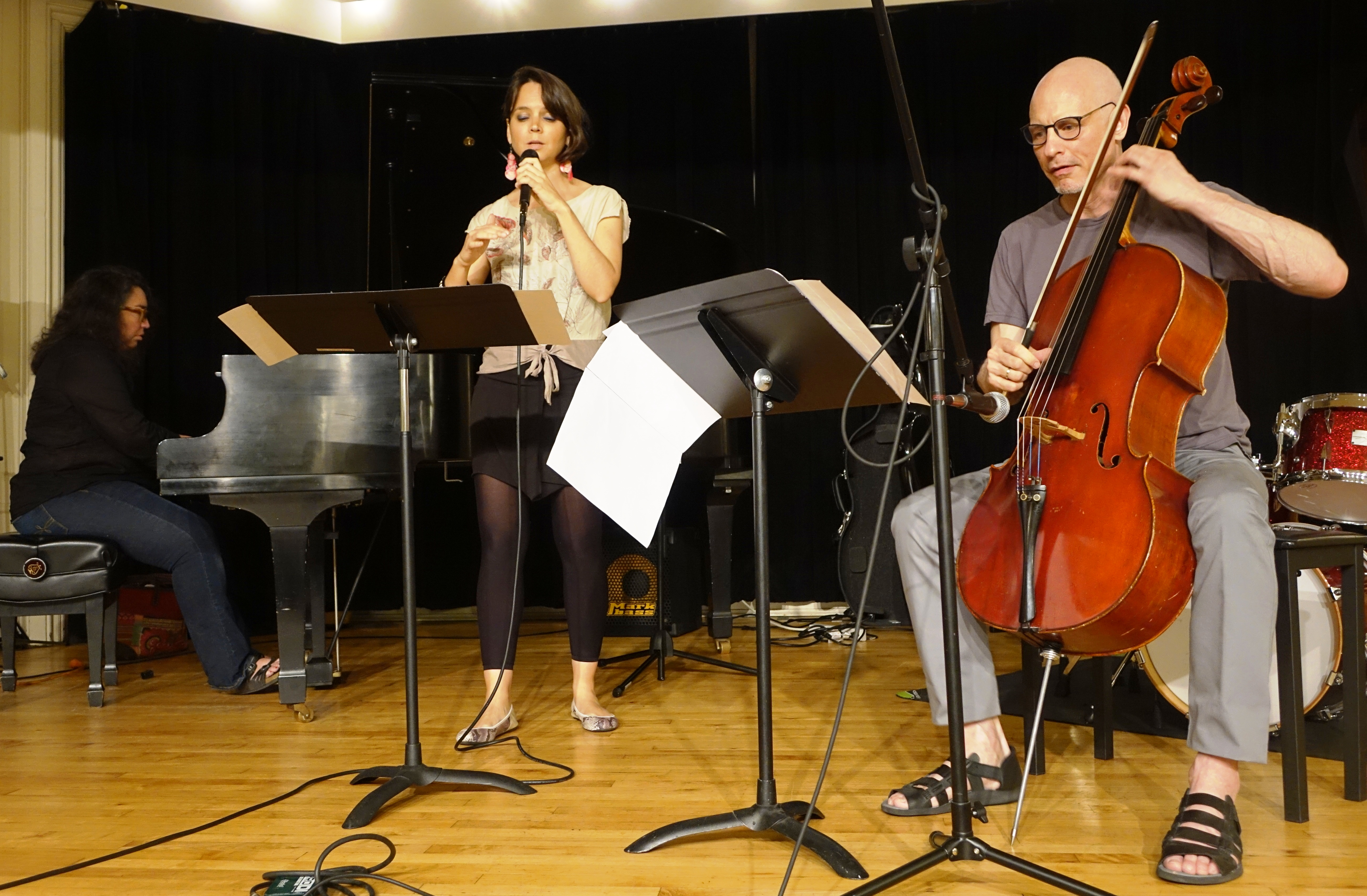 Angelica Sanchez, Sara Serpa and Erik Friedlander at the Brooklyn Conservatory of Music in May 2018