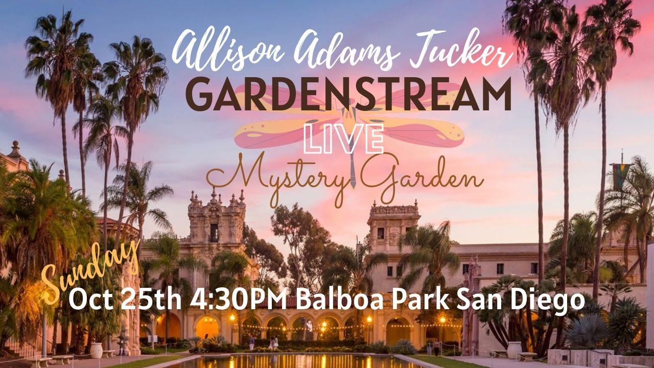 Mystery Garden - Allison Adams Tucker & Friends Gardenstream Live In Balboa Park