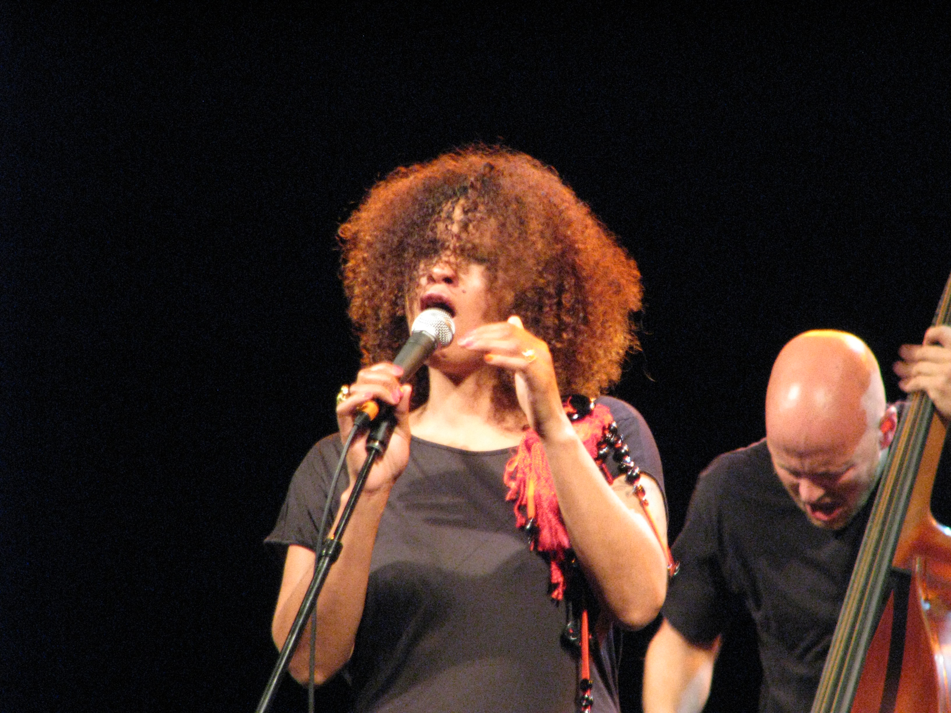 Neneh Cherry and the Thing - Festival Ljubljana, June 2012