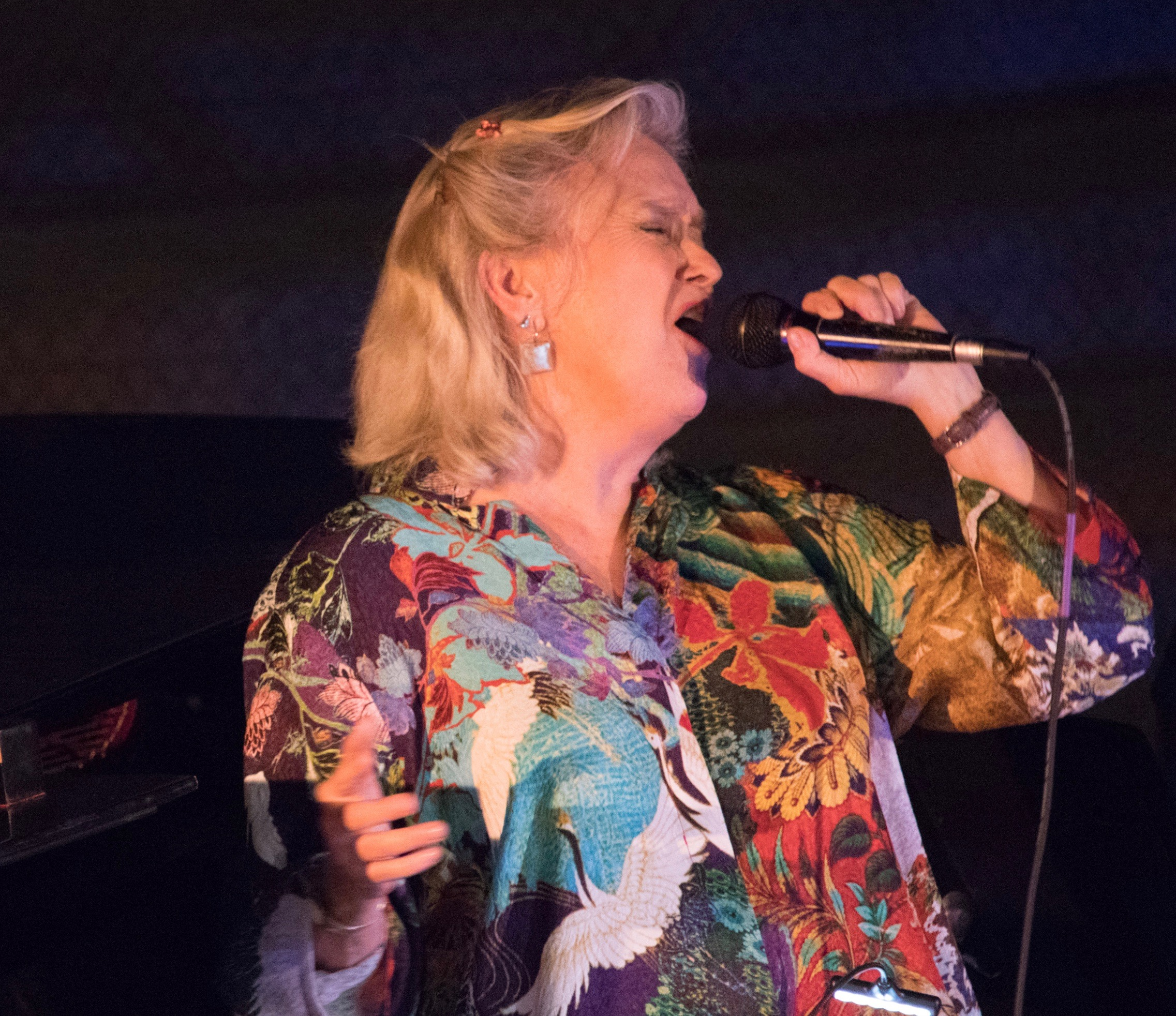 Susan Krebs @ SPRING record release