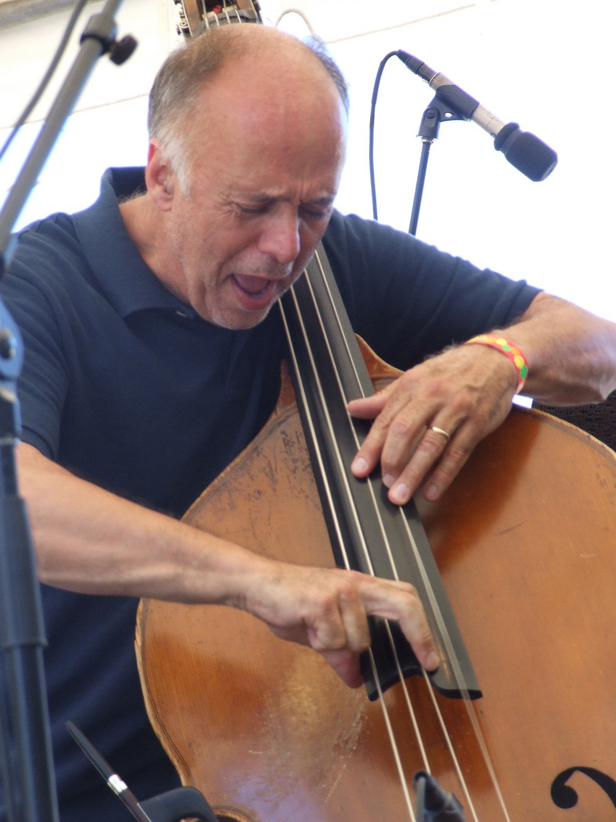 2008 Chicago Jazz Festival, Saturday: Larry Gray Playing His Commissioned Tribute to 4 Late Great Chicago Bassists