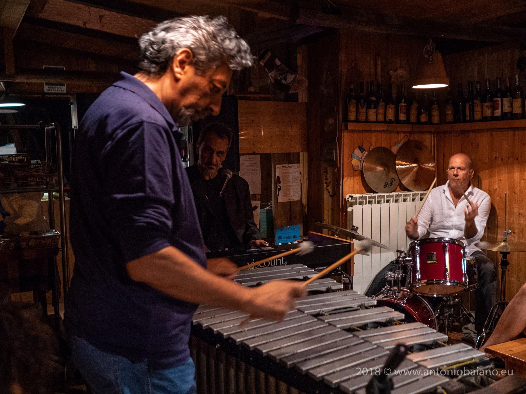 Alkaline Jazz Trio
