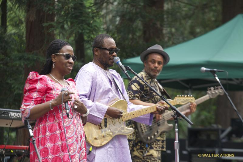 Amadou & Mariam At Stern Grove
