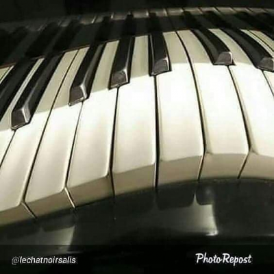 88 Keys Of The Piano Series Downstairs In The Cellar at Le Chat Noir De Salis
