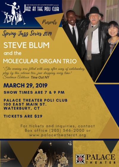 Steve Blum And The Molecular Organ Trio at Palace Theater Poli Club