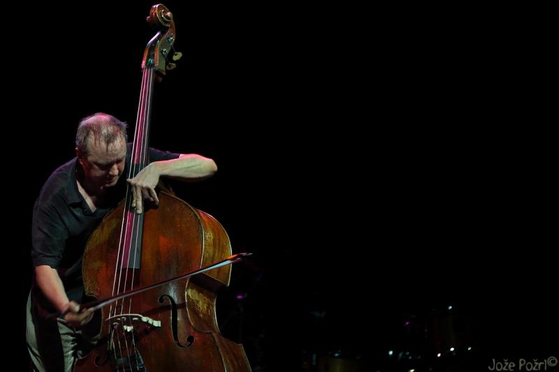 John Edwards Double Bass Man