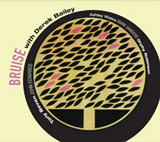 "Read ""Bruise With Derek Bailey"" reviewed by"