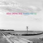 Brad Shepik Trio: Places You Go