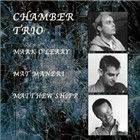Mark O'Leary/Mat Maneri/Matthew Shipp: Chamber Trio