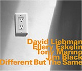 David Liebman / Ellery Eskelin: Different But the Same