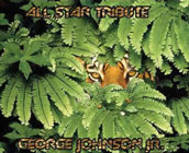 George Johnson, Jr.: All Star Tribute