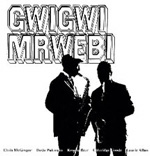 Album Mbaqanga Songs by Gwigwi Mrwebi