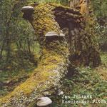 Album Kosmischer Pitch by Jan Jelinek