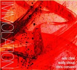 Nels Cline / Wally Shoup / Chris Corsano: Immolation / Immersion