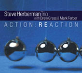 Steve Herberman Trio: Action: Reaction