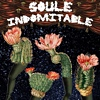 "Read ""Soule Indomitable at Nectar's"" reviewed by Doug Collette"