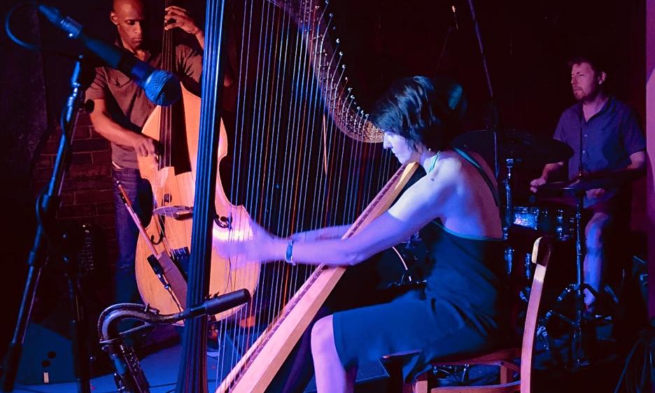 Live Harps From Birmingham: FitkinWall, Robin Williamson & Alina Bzhezhinska