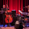 "Read ""Summer Jazz and Fringe Jazz Fest 2019"" reviewed by Jakob Baekgaard"