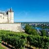 Chenin Blanc from the Loire