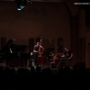 "Read ""Jim Black Trio alla Sala Vanni di Firenze"" reviewed by Neri Pollastri"