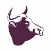 Bulls Head Barnes